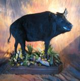 images/north_american_big_game/taxidermy_04.jpg