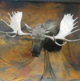 images/north_american_big_game/taxidermy_48.jpg